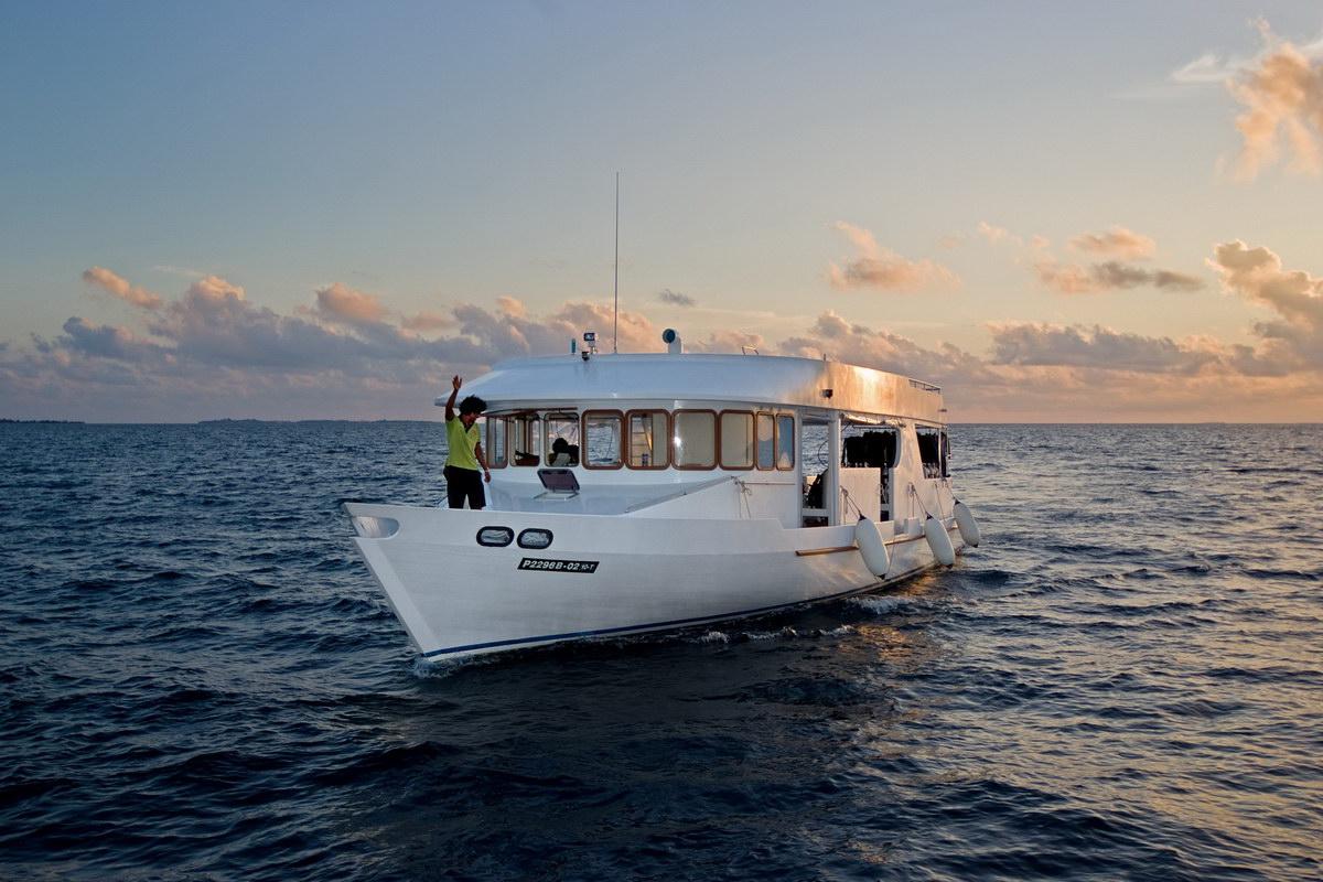 Luxus tauchsafaris auf den malediven mit liveaboard mv for Wirodive